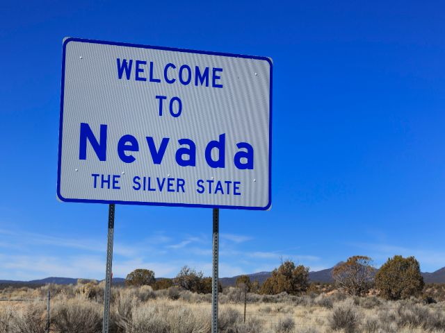 Starting a business in nevada